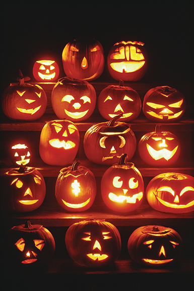 <strong> Preserve carved pumpkins in various ways</strong>