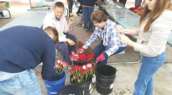 <strong>Volunteers create 2,000 rose bouquets for Mother's Day</strong>