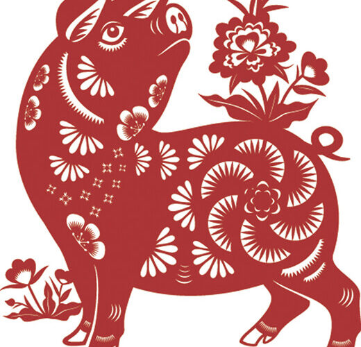 Celebrate Chinese New Year: 2019 is the Year of the Pig
